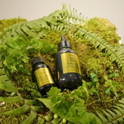 美しい髪を育む頭皮環境にするヘアセラムとヘアオイル【TWI】