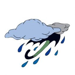5/23〜6/22の雨星人は「恋も仕事も念入りなリサーチと準備が不可欠!」【イヴルルド遙華のネイチャーサイン占い】
