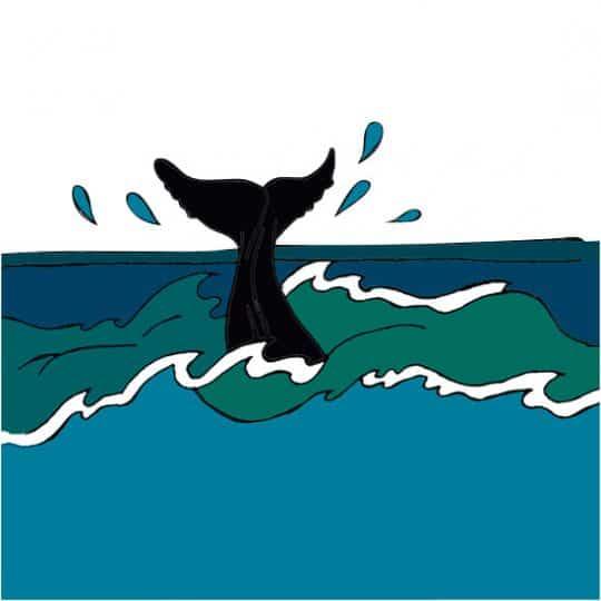 【海星人】9/23〜10/22は「ショッピングが開運アクション!」イヴルルド遙華のネイチャーサイン占い
