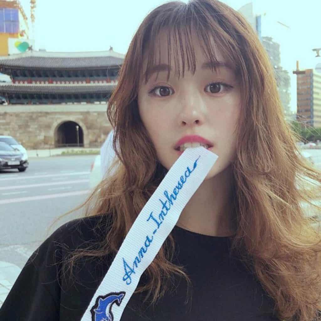 韓国 で 人気 の 日本 人