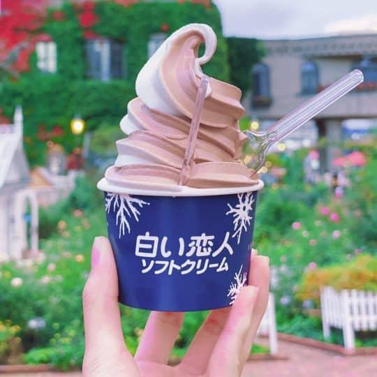 GoToで大人気♡ 札幌でインスタ映え間違いなしの厳選スポット4!